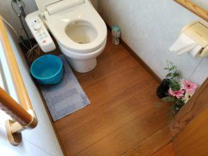 トイレの床リフォームの施工後